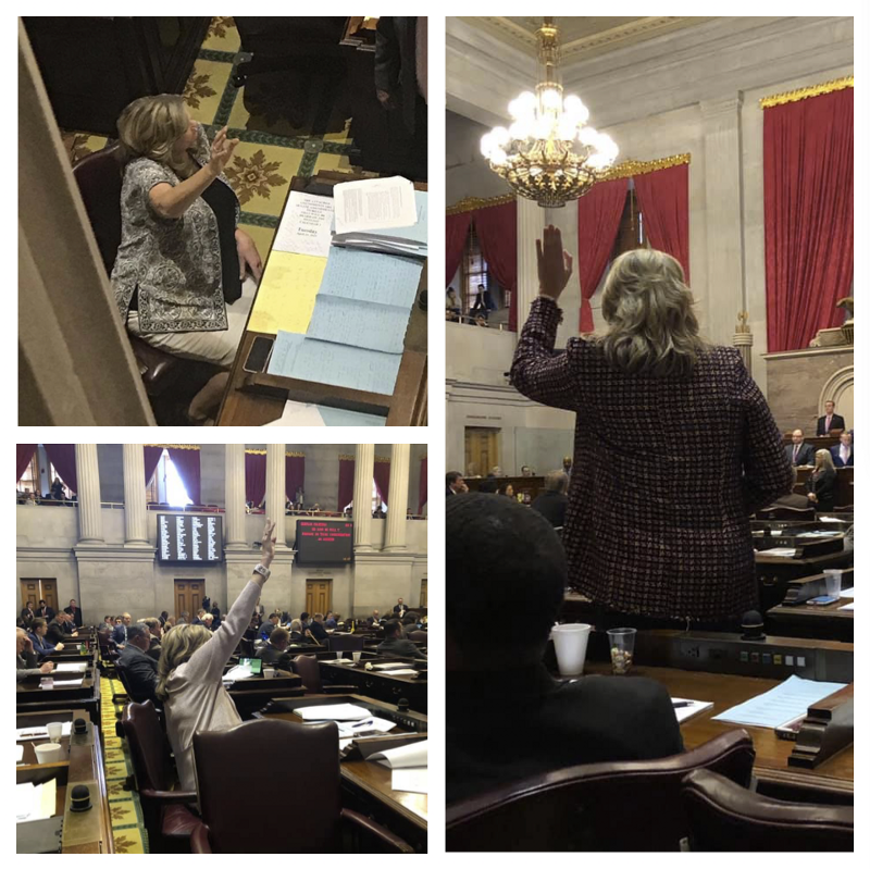 Rep. Gloria Johnson raising her hand on March 8, April 11, and April 23 and never called on. (TN Legislature)